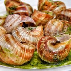 escargots à l'ail Les Tables de Breughel